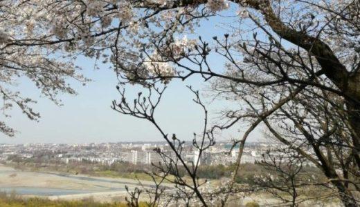 滝山城から望む風景