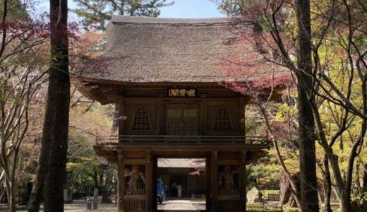 平林寺の境内林を歩く