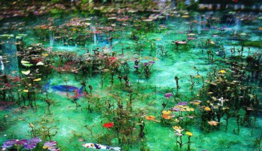 岐阜県関市の美しすぎる池ー「モネの池」
