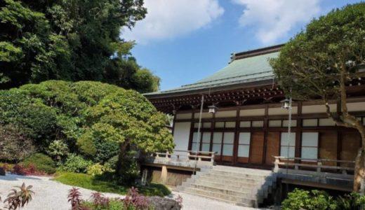 報国寺を訪ねて