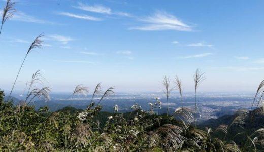 秋晴れの景信山から高尾山