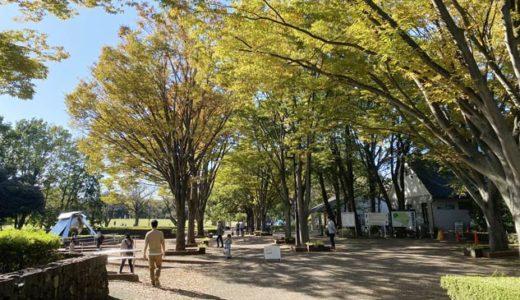 休日の都立公園
