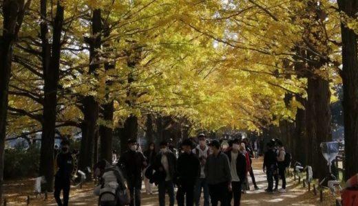 愛娘と昭和記念公園に