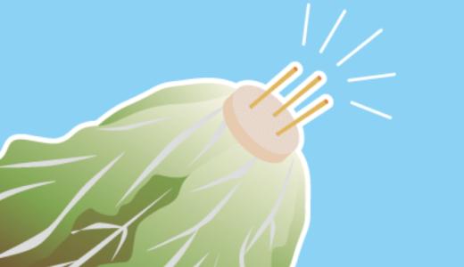 葉物野菜は爪楊枝で長持ち