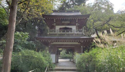 【街ぶら】鎌倉のハイキングコースを歩く①